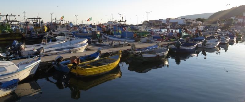 Fischerbootshafen in Setúbal. Es waren viele aktive Fischer zu sehen.