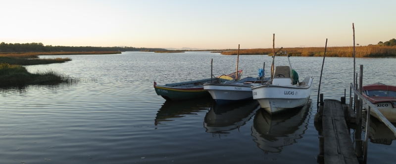 Boote in Comporta