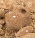 Stein mit Gesicht. Führ den einzigen Süsswasservogel der Insel sind die Löcher im Stein herrliche Regenfangbehälter.
