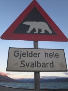 Lauf bis ans Bärenschild. Dahinter laufen sie wild herum. Innerhalb Longyearbyens soll man wohl halbwegs sicher sein.