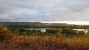 Sonnenaufgang am Derwent River direkt vom Zelt aus beobachtet.