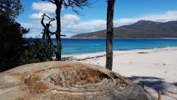 In der Wineglass Bay - spät genug, dass der Strand Menschenleer ist.